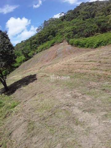 Terreno à venda, 60665 m² por R$ 1.455.950 - Posse - Petrópolis/RJ - Foto 8