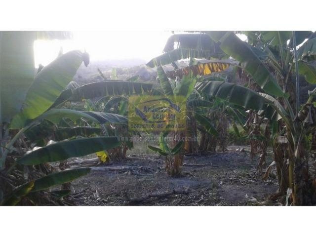 Excelente Área ? Com 6 Hectares - Chã-Grande/PE Propriedade ID : A0317 - Foto 8