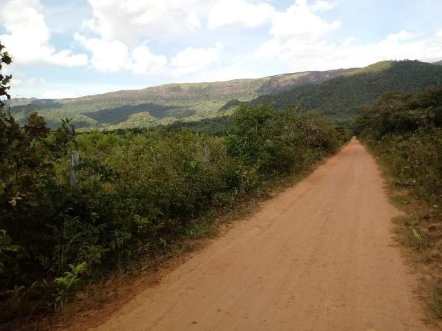 Fazenda em Rosário Oeste ha 140 km de Cuiabá - Foto 10