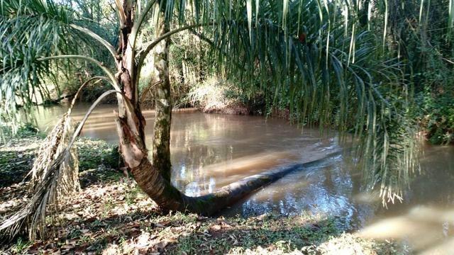 Chacara Fazenda Rio Grande 17.800m2 - Foto 6
