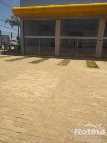 Loja comercial para alugar em Jardim inconfidencia, Uberlandia cod:533670