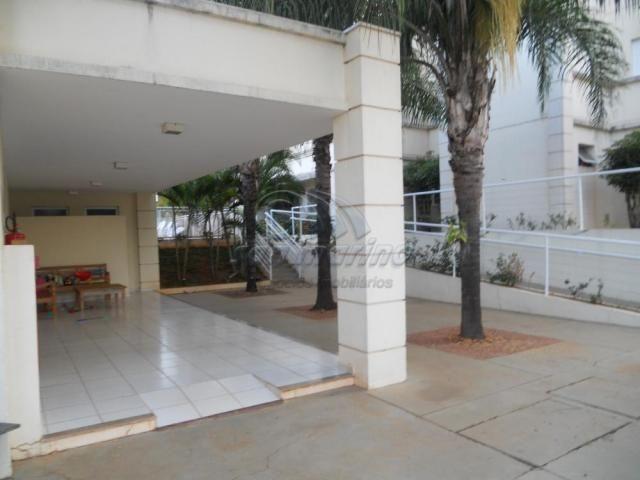 Apartamento à venda com 2 dormitórios em Colina verde, Jaboticabal cod:V4140 - Foto 18
