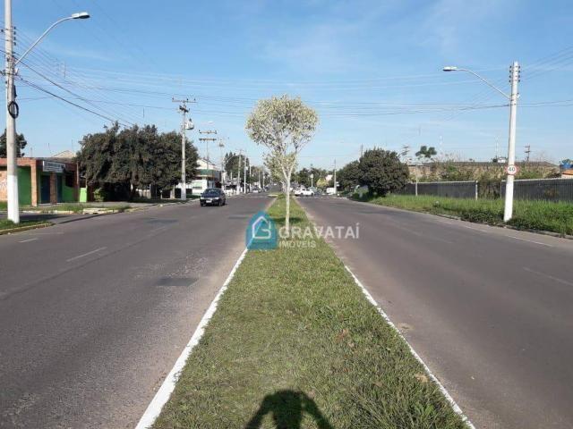 Terreno para alugar por R$ 1.670/mês - Bom Sucesso - Gravataí/RS - Foto 4
