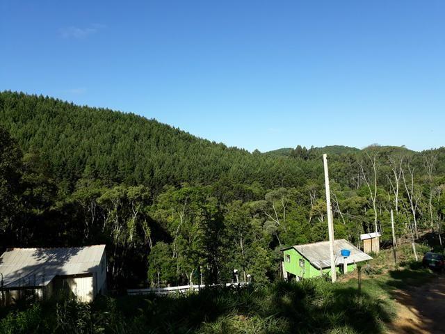 TORRANDO !!! LINDA CHÁCARA de 2.500m2° EM BOCAIUVA - Foto 7