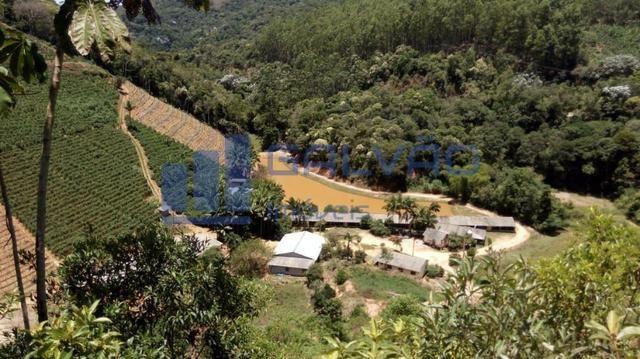 JG. Sítio de 234 mil m² com casa de 3 quartos com suíte em Marechal Floriano! - Foto 4