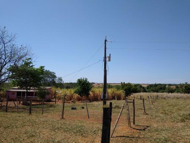Fazenda localizada no Bezerra - Formosa/GO - Foto 6