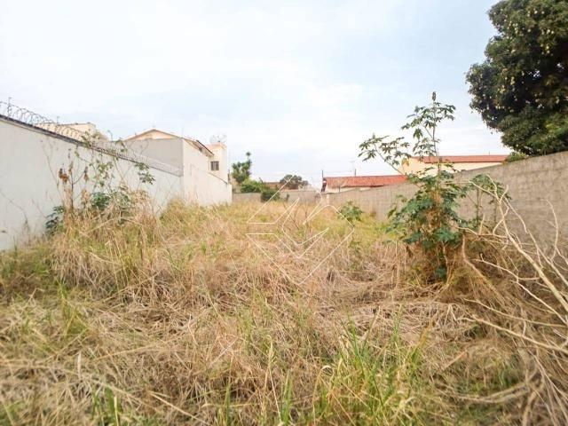 Terreno à venda, 300 m² por R$ 250.000,00 - Odília - Rio Verde/GO - Foto 4