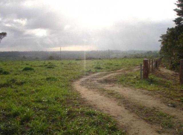 Realize seu sonho e adquira já sua propriedade rural ou urbana - Foto 3