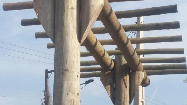 Pinus alto clave madeira tratada - Foto 6