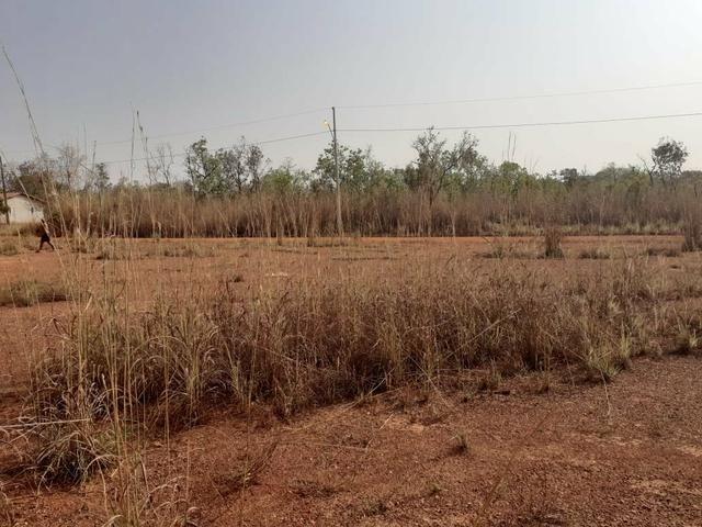 Vendo dois terrenos na Vila sucuri 11×30 cada