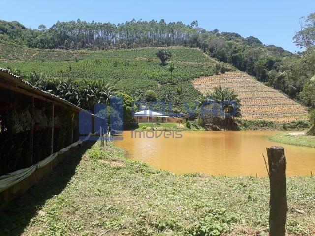 JG. Sítio de 234 mil m² com casa de 3 quartos com suíte em Marechal Floriano! - Foto 15