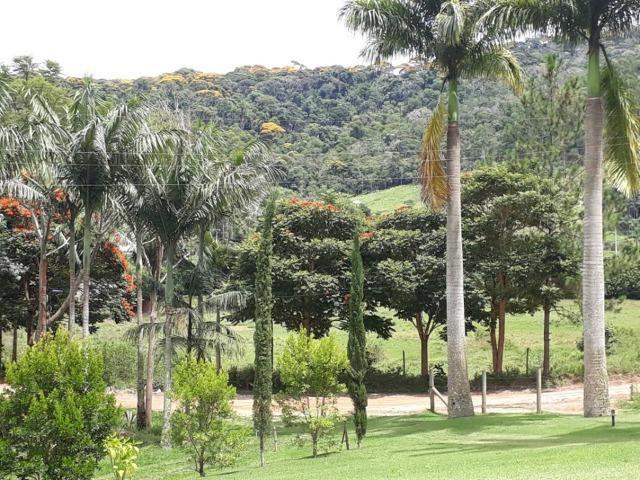 Linda chácara 3.000² a 7 km do trevo de Fazenda do Estado e 15km de Pedra Azul D.M.!! - Foto 14