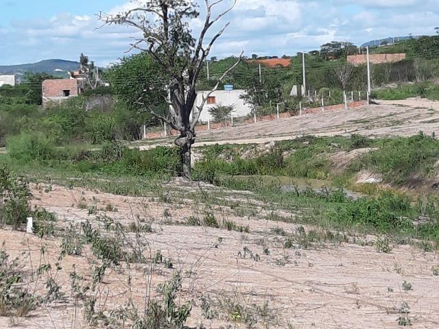 Gravatá - 1.000 m² - Na Beira da lagoa - É Um Sonho! - Foto 11