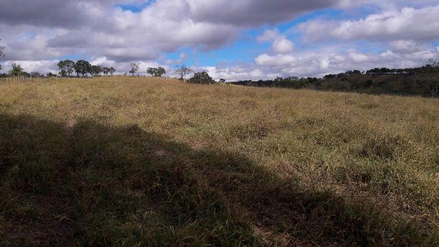 Fazenda 180 Há em São José da Varginha - Foto 12