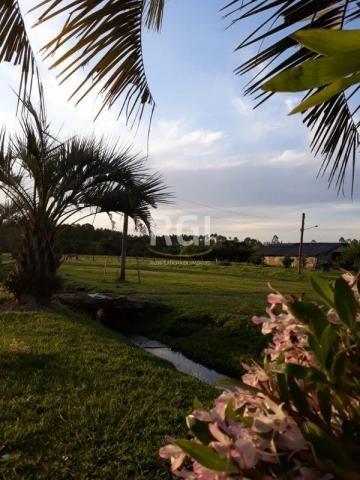 Sítio à venda com 3 dormitórios em Olaria, Triunfo cod:MF22250 - Foto 2