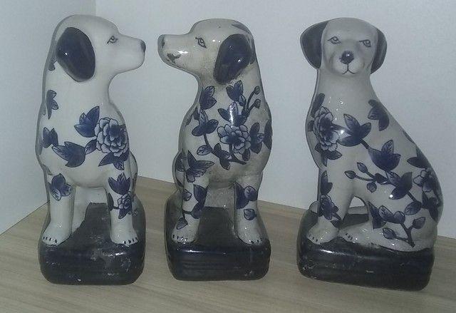 Cachorros em porcelana - Foto 3