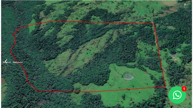 Campo e mato em Bossoroca - Foto 5