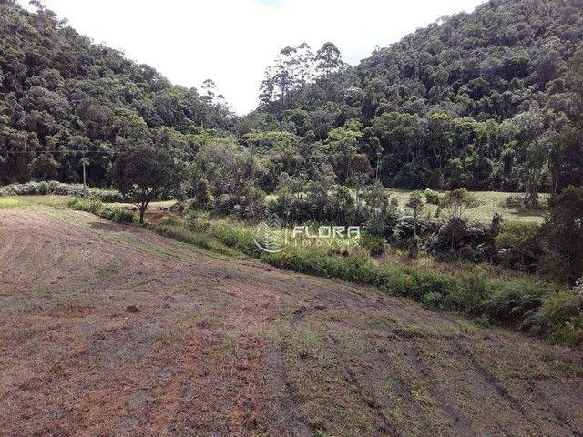 Terreno à venda, 60665 m² por R$ 1.455.950 - Posse - Petrópolis/RJ - Foto 9