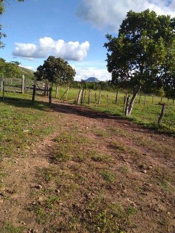 Vendo uma linda fazenda no município de conceição do Tocantins 15 milhões   - Foto 7