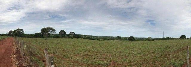 Fazenda Brazabrantes 12 alq. Planos ! - Foto 9
