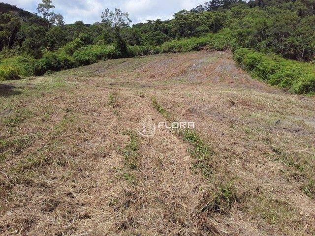 Terreno à venda, 60665 m² por R$ 1.455.950 - Posse - Petrópolis/RJ - Foto 7