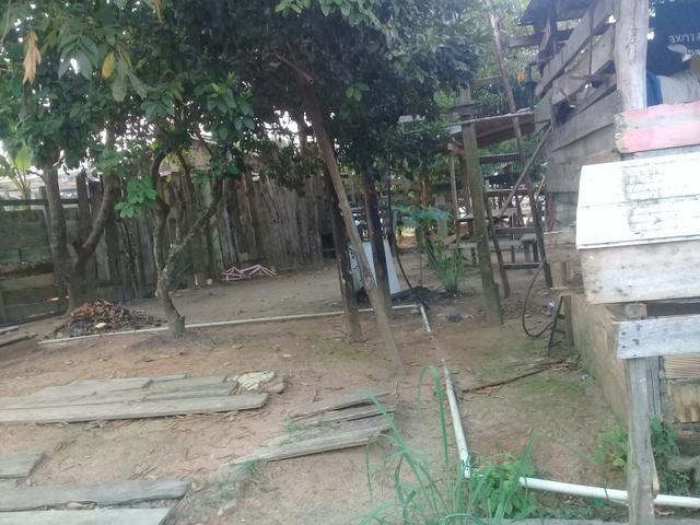Vendo casa no município de autazes - Foto 5