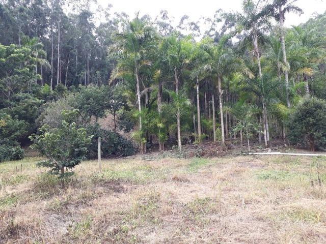 Linda chácara 3.000² a 7 km do trevo de Fazenda do Estado e 15km de Pedra Azul D.M.!! - Foto 2