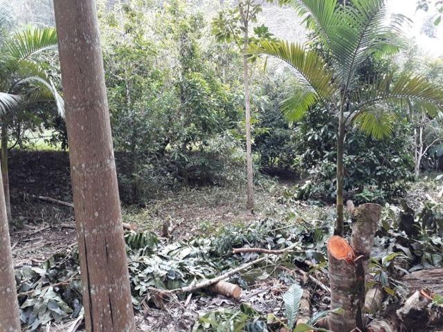 Linda chácara 3.000² a 7 km do trevo de Fazenda do Estado e 15km de Pedra Azul D.M.!! - Foto 16