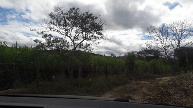 Fazenda 180 Há em São José da Varginha - Foto 15