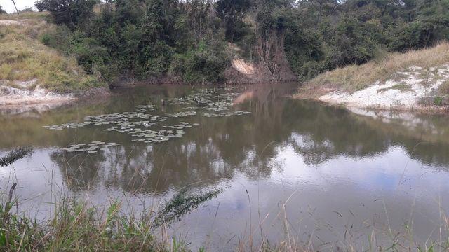 Fazenda 180 Há em São José da Varginha - Foto 2