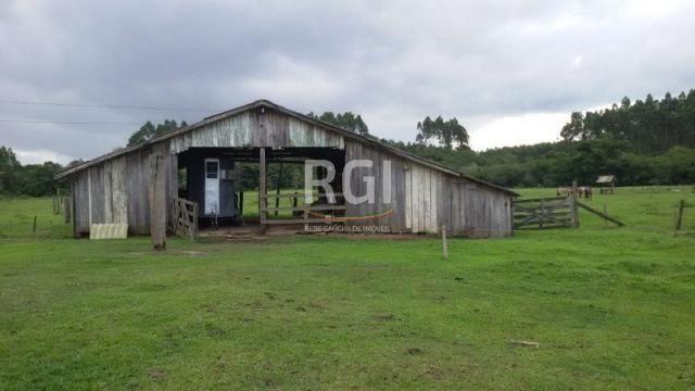 Sítio à venda com 3 dormitórios em Olaria, Triunfo cod:MF22250 - Foto 12