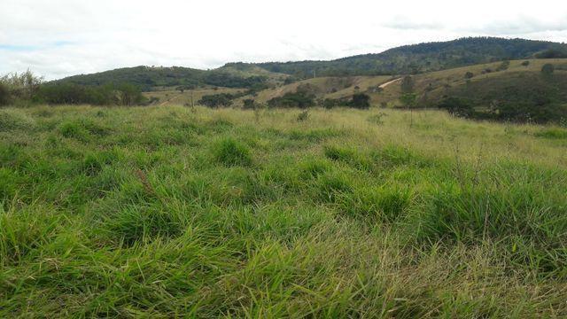 Fazenda 180 Há em São José da Varginha - Foto 7