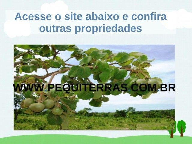 Fazendas em Cocalinho - Foto 2