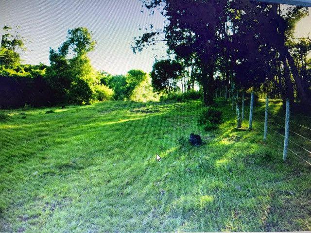 Campo e mato em Bossoroca - Foto 3
