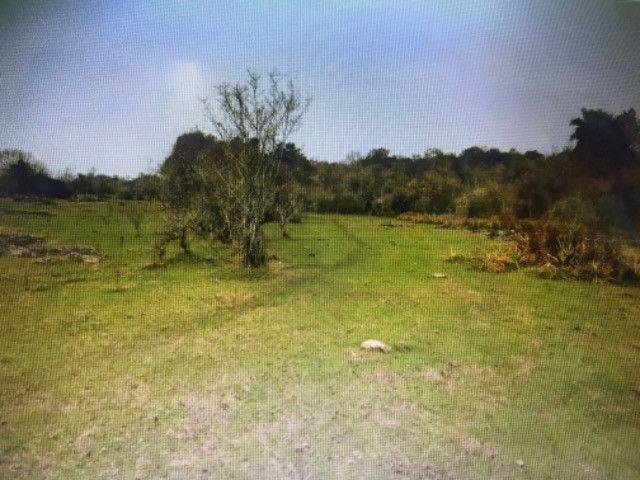 Campo e mato em Bossoroca - Foto 11