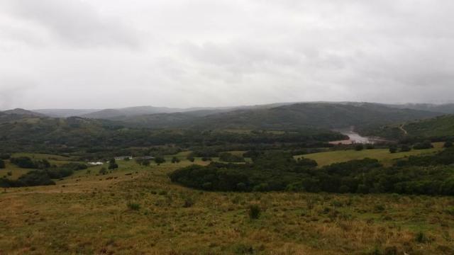 Fazenda Pecuaria - Foto 4