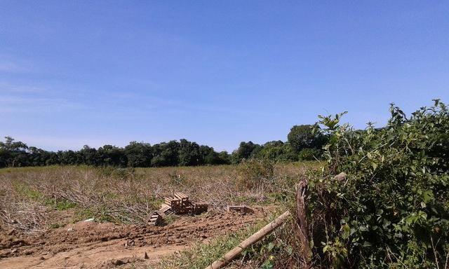 Vendo fazenda com 32 alqueres - Foto 5