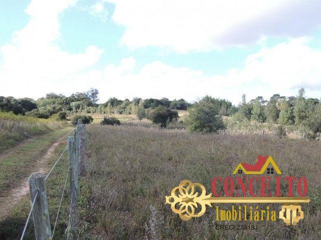 T.O.R.R.O 3,5 hectares no centro de Águas Claras por apenas R$ 300 mil - confira - Foto 9