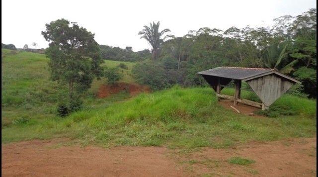 Vendo Excelente fazenda 95 hectares 36 Km de Porto Velho - Foto 19
