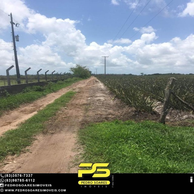 Terreno com plantação à venda, 200000 m² por R$ 1.000.000 - Santa Rita/PB - Foto 7