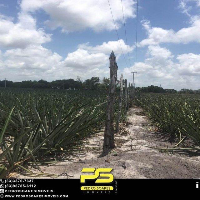 Terreno com plantação à venda, 200000 m² por R$ 1.000.000 - Santa Rita/PB - Foto 4