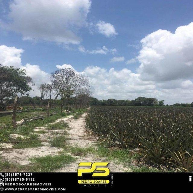 Terreno com plantação à venda, 200000 m² por R$ 1.000.000 - Santa Rita/PB - Foto 11