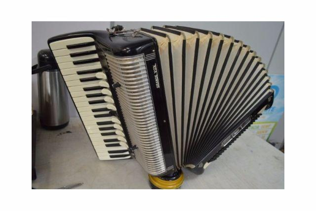 Acordeon Grand Vox com Captação