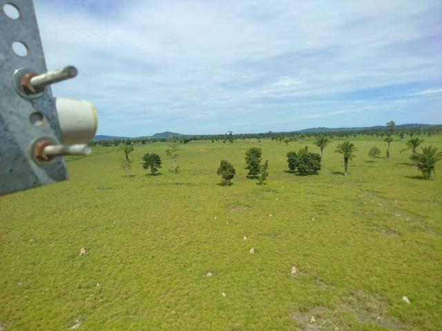 Fazenda no Pará - Foto 15