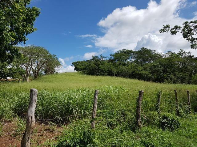 João Alfredo = Vend. 350 - Sítio com 17 Hect. Pronto pra Plantar e Criar - Foto 7