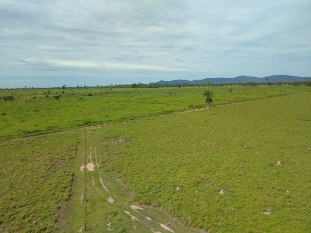 Fazenda no Pará - Foto 17