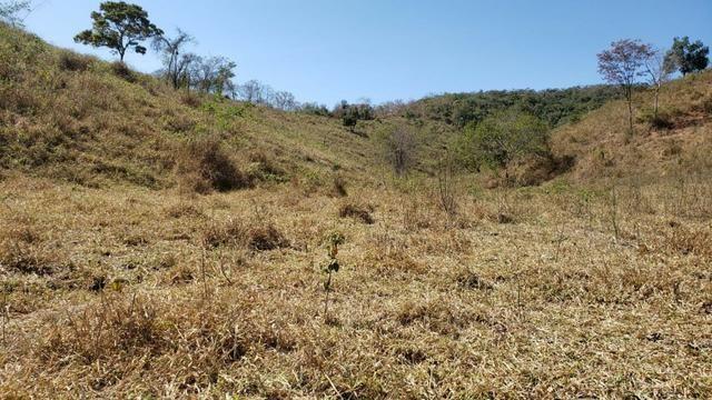 Fazenda 42 Alqueires em Campanário/MG, região de Governador Valadares/MG - Foto 6