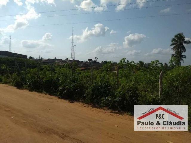 Ótima propriedade em Feira Nova, com 4 hectares - Foto 9