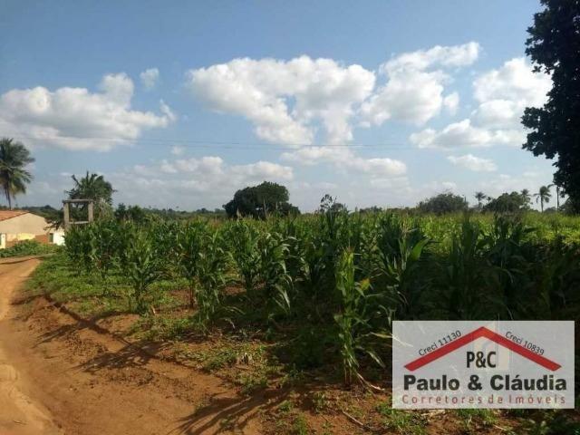 Ótima propriedade em Feira Nova, com 4 hectares - Foto 10