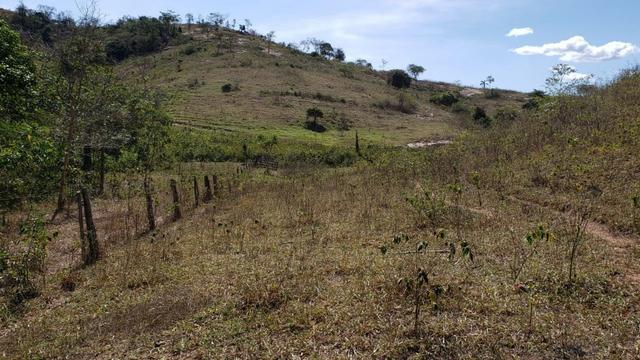 Fazenda 42 Alqueires em Campanário/MG, região de Governador Valadares/MG - Foto 5